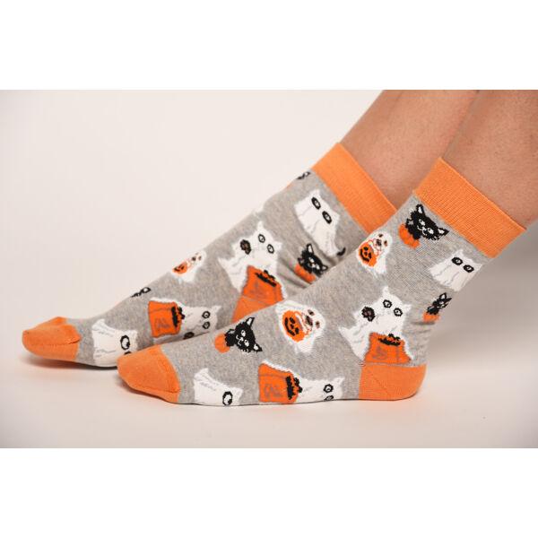 Női bokazokni narancs kutya-cica
